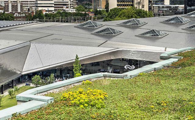 Water en planten op je dak: hoe staat het met de blauw-groene daken?