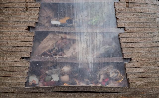Wil jij je #plantbabies voeden met je eigen afval? Wormen helpen je