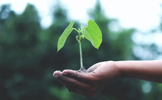 Stage, scriptie of project over duurzaamheid? Dan maak je kans op een award