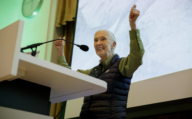 Jane Goodall: 'Ik zoek jongeren om te vechten voor een betere wereld'