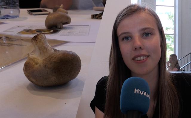 Studenten op expo met Amsterdamse bedrijven